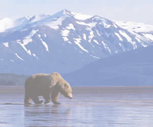 Aljaška Alaska